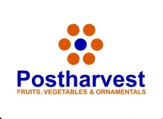 On sorting machines for tomatoes at Postharvest.biz